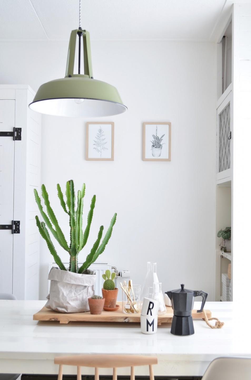 Des plantes table ma plante mon bonheur - Cactus porte bonheur ...