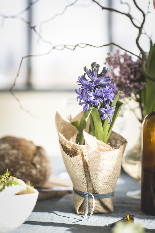 Un petit cadeau offrir pour p ques ma plante mon bonheur - Cactus porte bonheur ...
