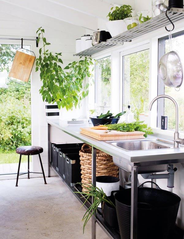 Les plantes animent la cuisine ma plante mon bonheur for Entretien jacinthe interieur