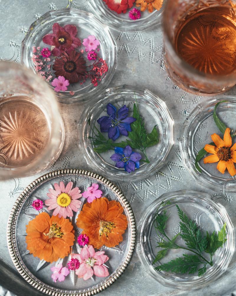 Diy une plante sous verre ma plante mon bonheur - Cactus porte bonheur ...