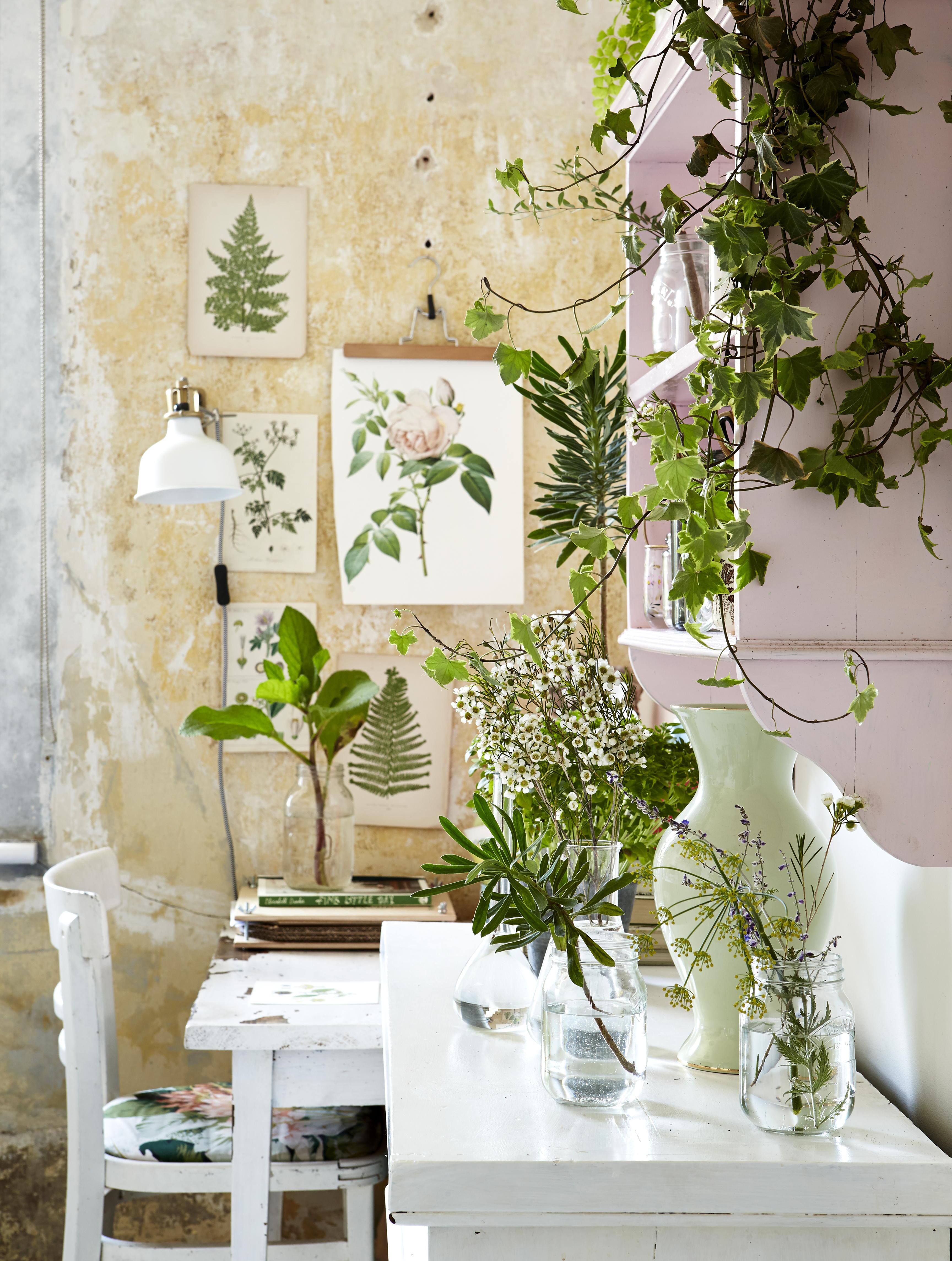 Le style botanique ma plante mon bonheur - Stijl ligstoelen anciennes ...