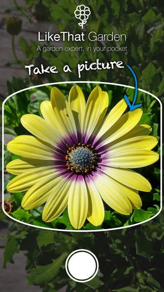 Nom d une plante ma plante mon bonheur - Comment trouver le nom d une plante ...