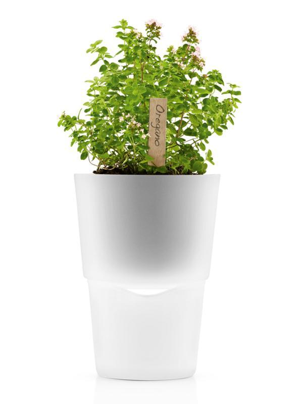 Pot Eva Solo pour herbes aromatiques
