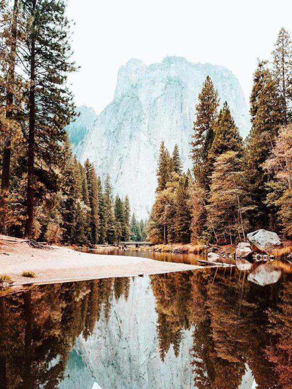 Les cinq plus beaux parcs naturels d'Amérique du Nord Maplantemonbonheur.fr