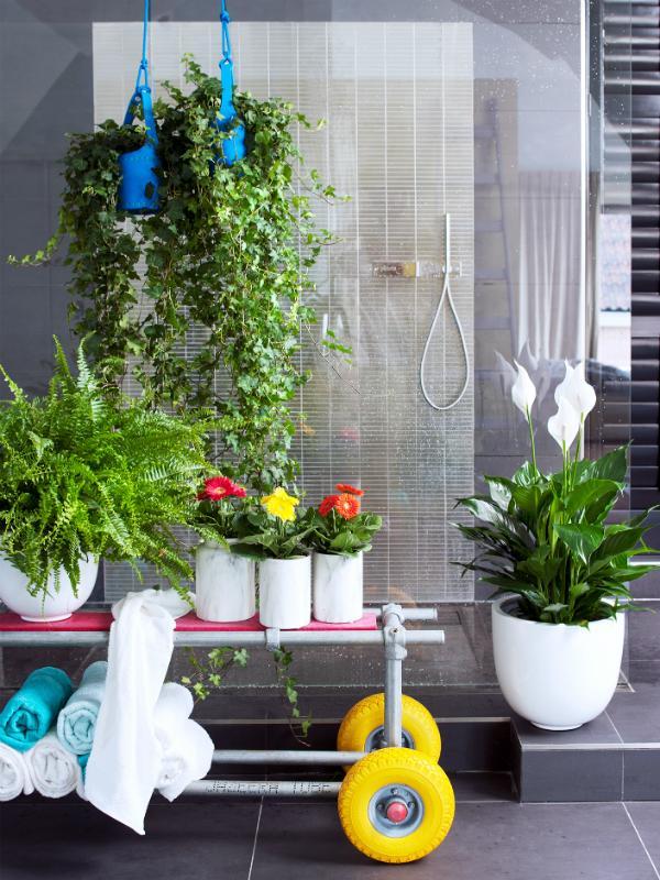 De la salle de bains au spa grâce aux plantes Maplantemonbonheur.fr